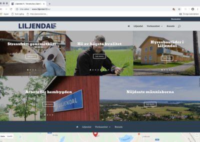 Liljendal.fi/Lovisa stad, idé, visuellt koncept, logotyp, webbplats, fotografering, textarbete, utomhusreklam